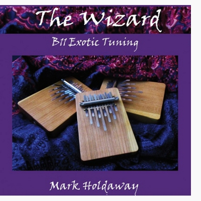Playing The Wizard - Exotic Tuning for B11 (eBook)