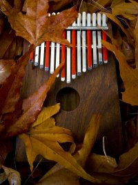 Kalimba+Leaves 200wide